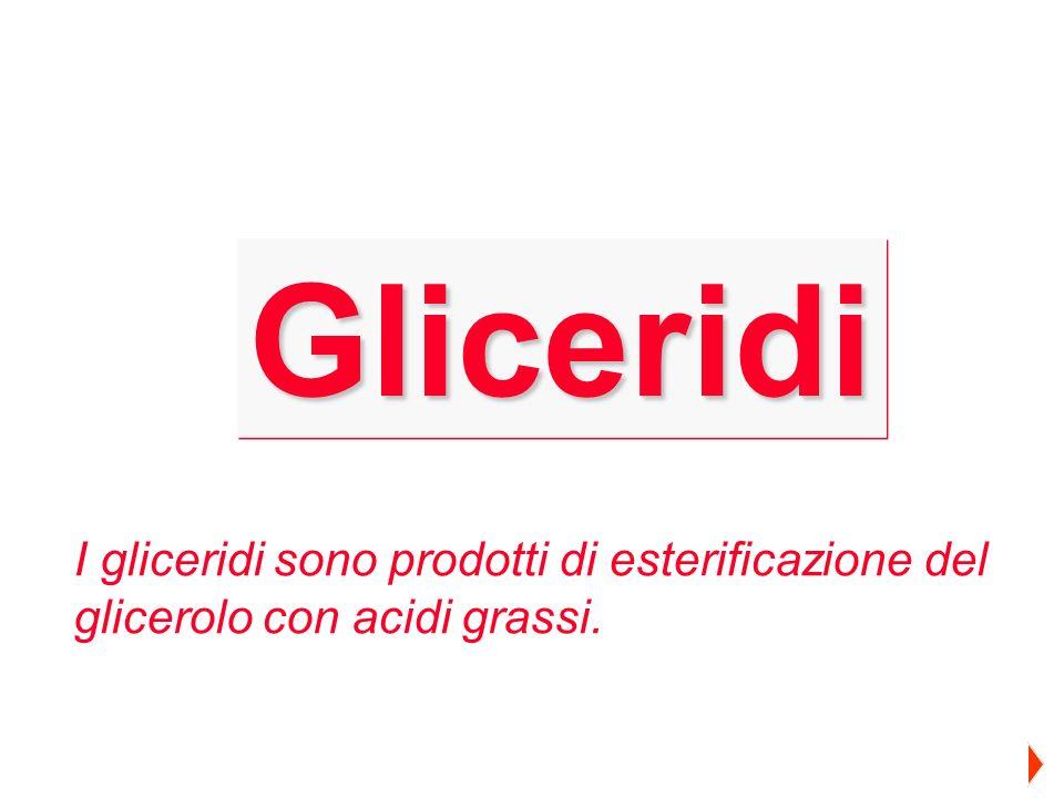 Gliceridi I gliceridi sono prodotti di esterificazione del