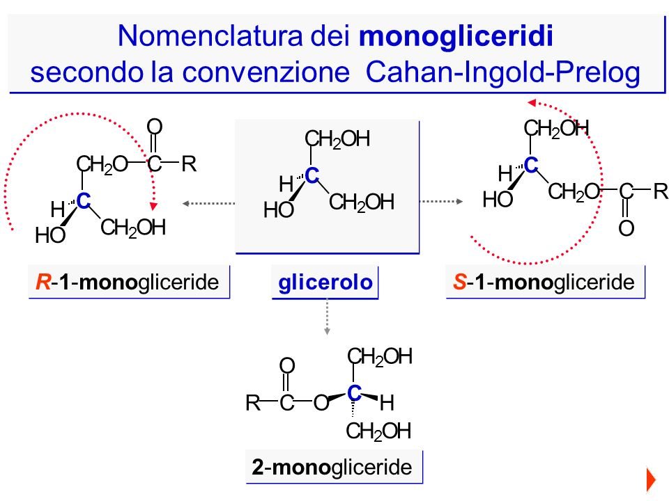 Nomenclatura dei monogliceridi