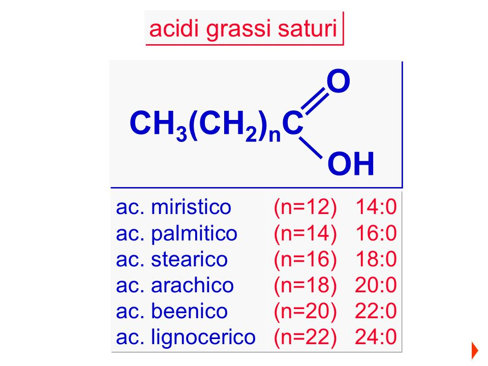 O CH3(CH2)nC OH acidi grassi saturi ac. miristico ac. palmitico