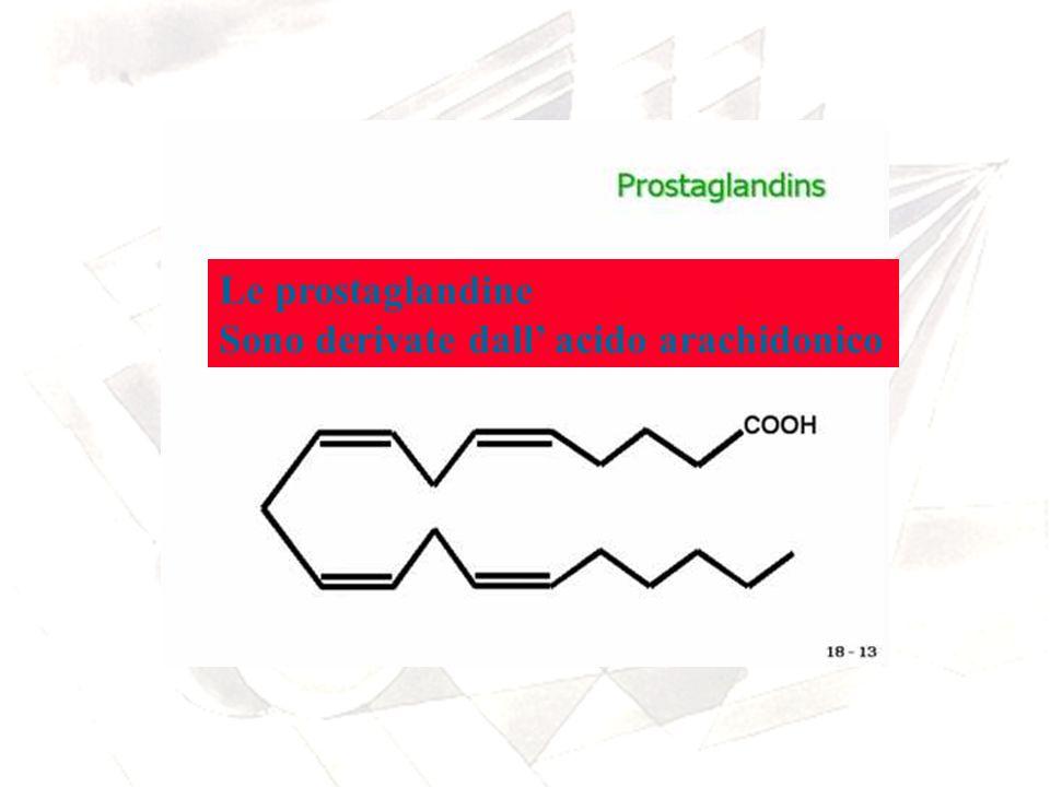 Le prostaglandine Sono derivate dall' acido arachidonico