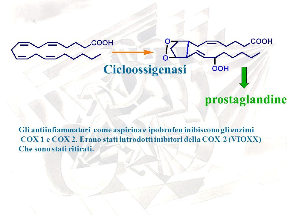 Cicloossigenasi prostaglandine