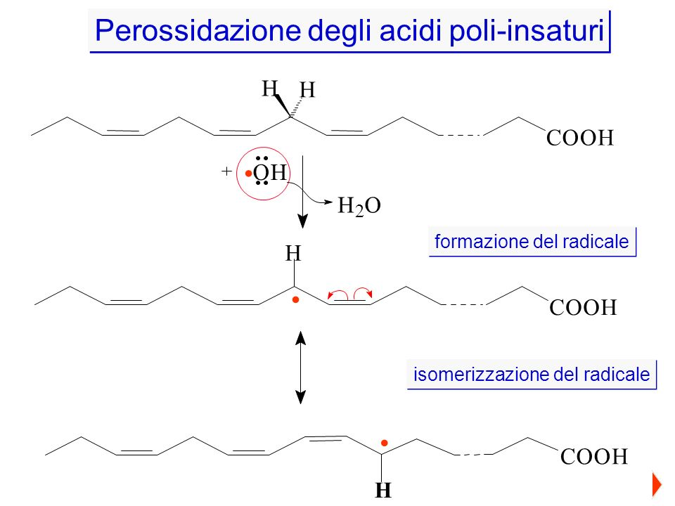 . . . Perossidazione degli acidi poli-insaturi H C O O H H O C O H C O
