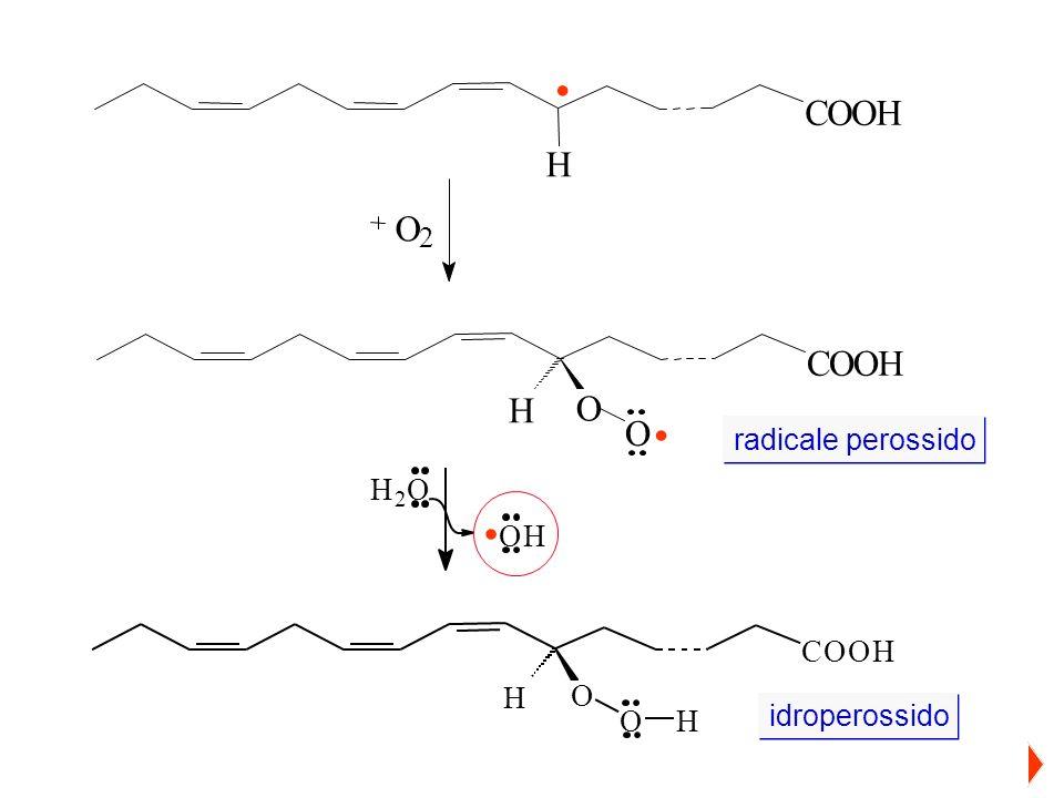 C O H . O 2 C O H . radicale perossido . C O H 2 idroperossido