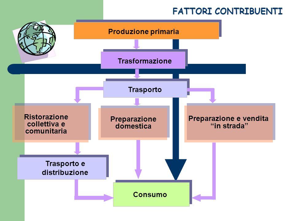 FATTORI CONTRIBUENTI Produzione primaria Trasformazione Trasporto