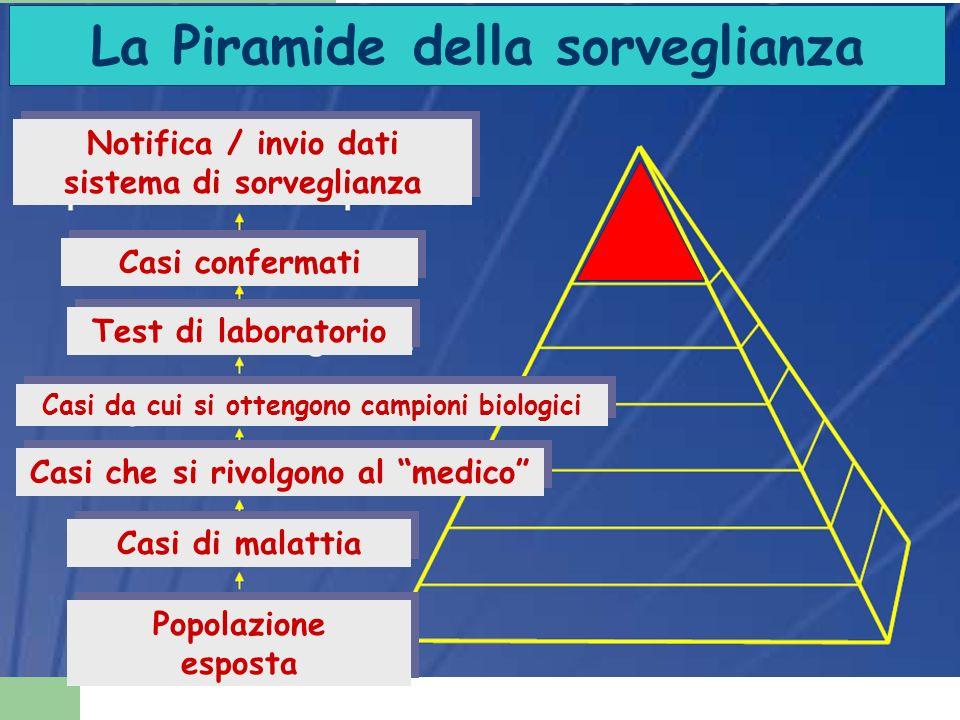 La Piramide della sorveglianza