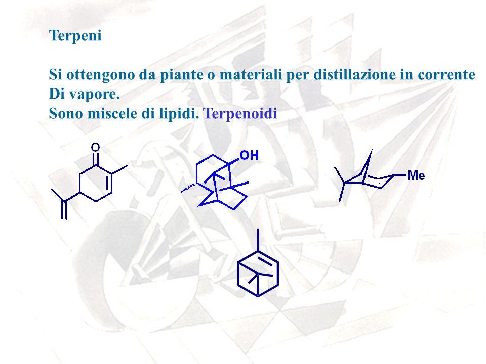 Terpeni Si ottengono da piante o materiali per distillazione in corrente.