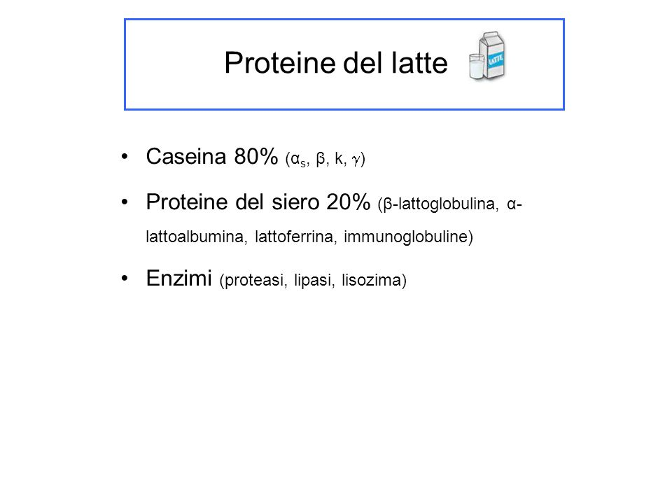Proteine del latte Caseina 80% (αs, β, k, )