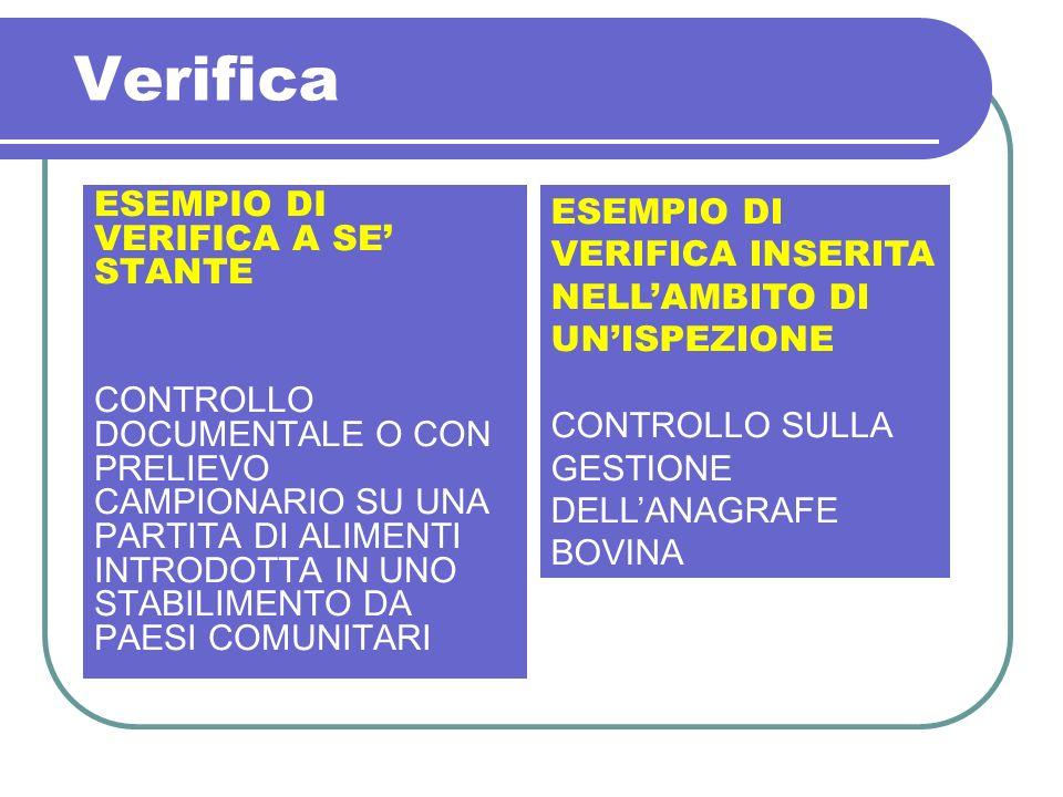 Verifica ESEMPIO DI VERIFICA A SE' STANTE