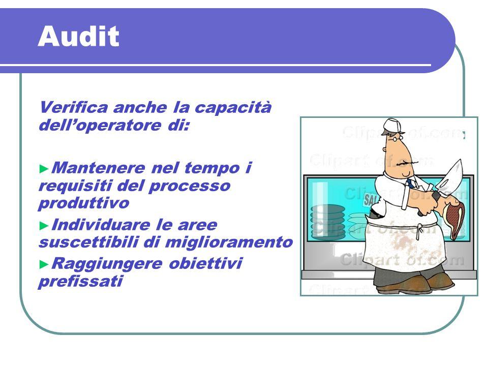 Audit Verifica anche la capacità dell'operatore di: