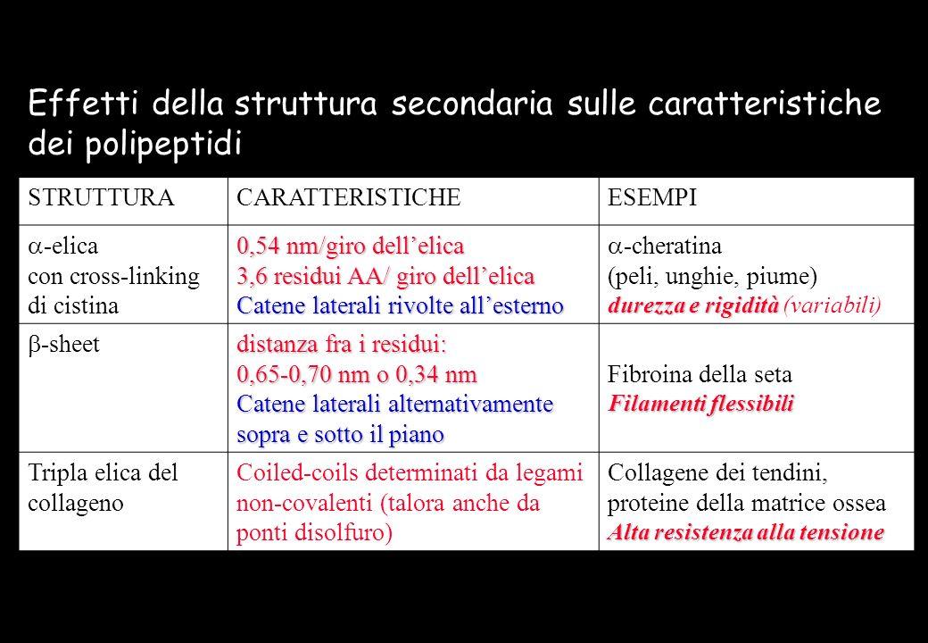 Effetti della struttura secondaria sulle caratteristiche