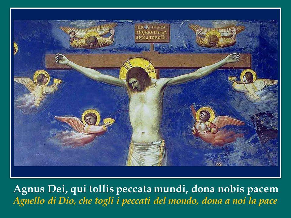Agnus Dei, qui tollis peccata mundi, dona nobis pacem