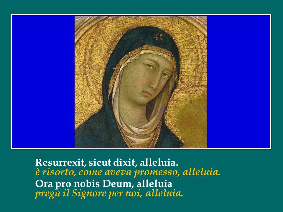 Resurrexit, sicut dixit, alleluia