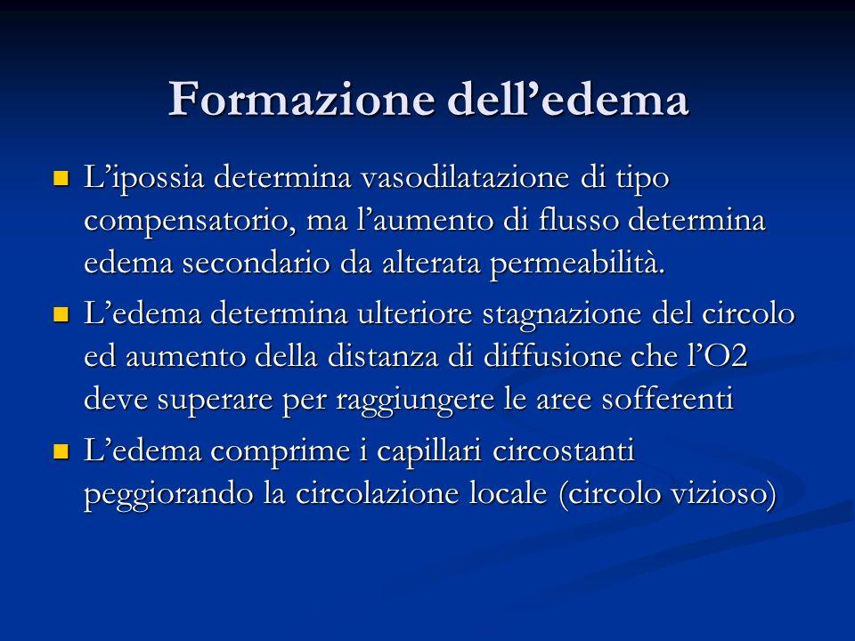 Formazione dell'edema