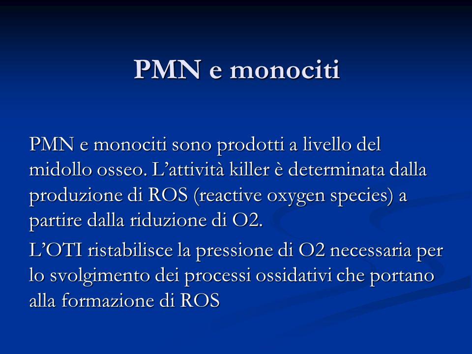 PMN e monociti