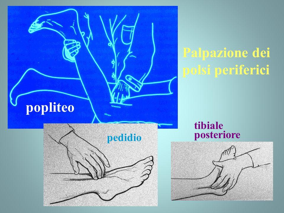 Palpazione dei polsi periferici popliteo tibiale posteriore pedidio