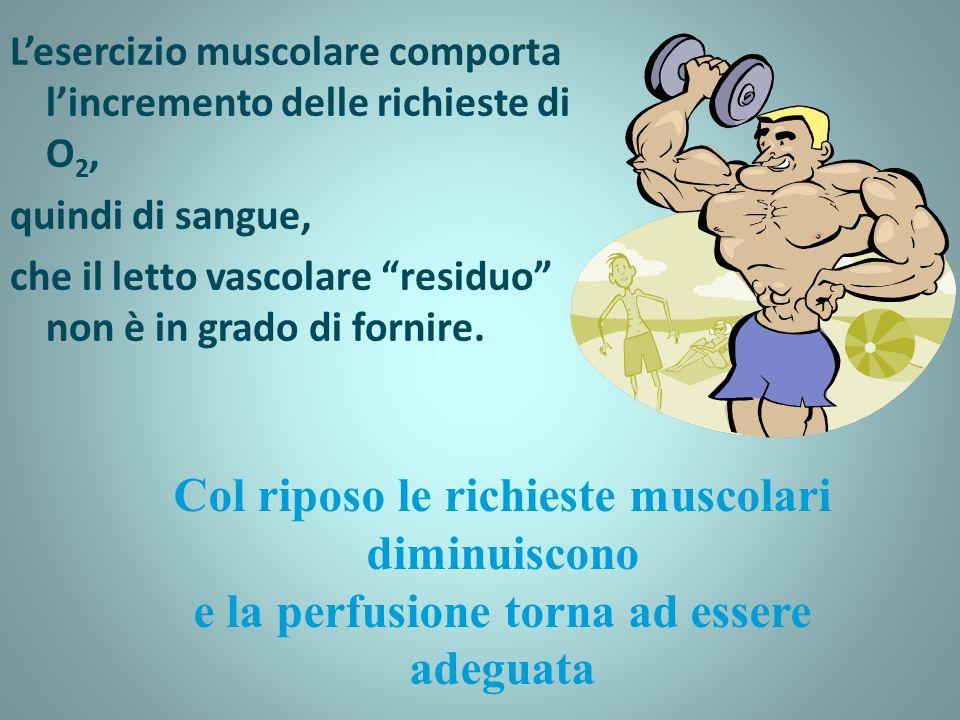 Col riposo le richieste muscolari diminuiscono