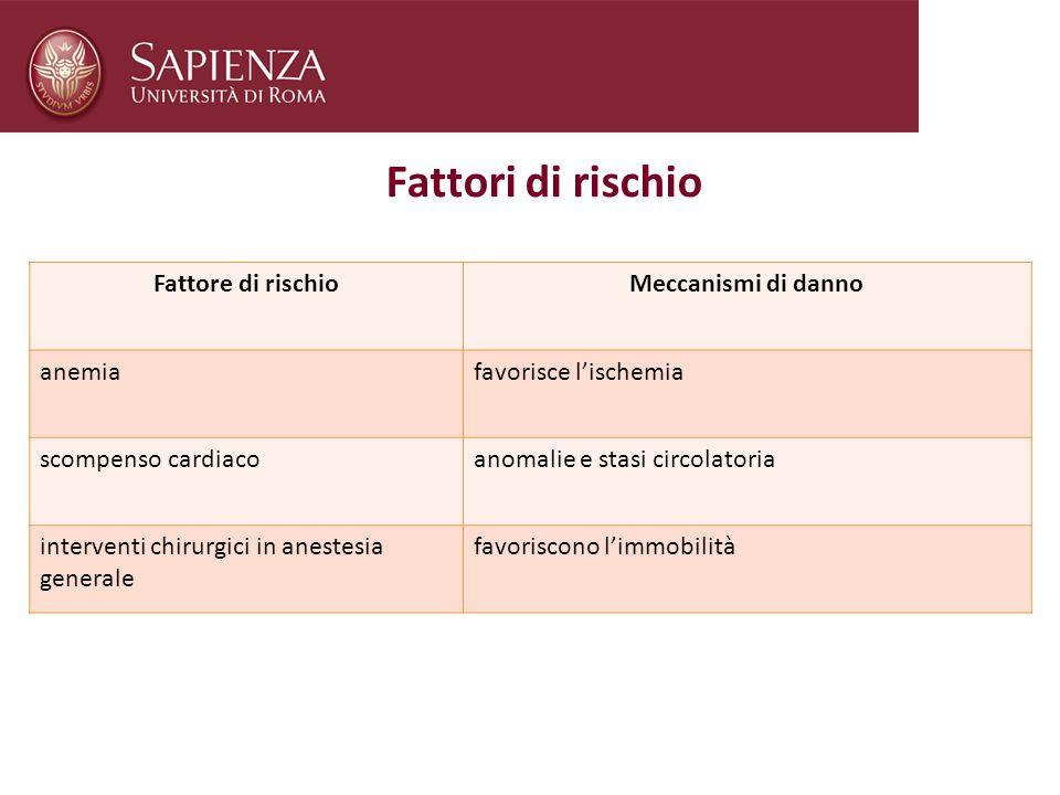 Fattori di rischio Fattore di rischio Meccanismi di danno anemia