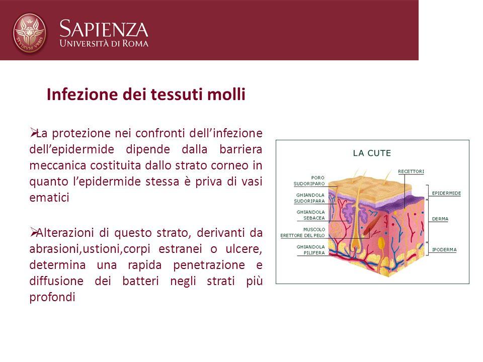 Infezione dei tessuti molli