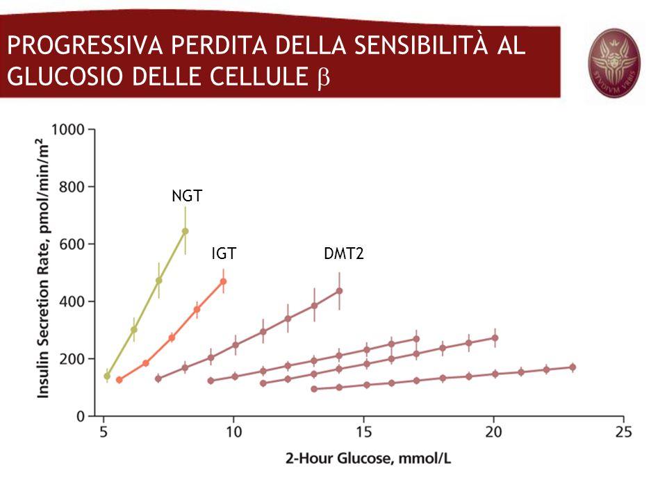 PROGRESSIVA PERDITA DELLA SENSIBILITÀ AL GLUCOSIO DELLE CELLULE 