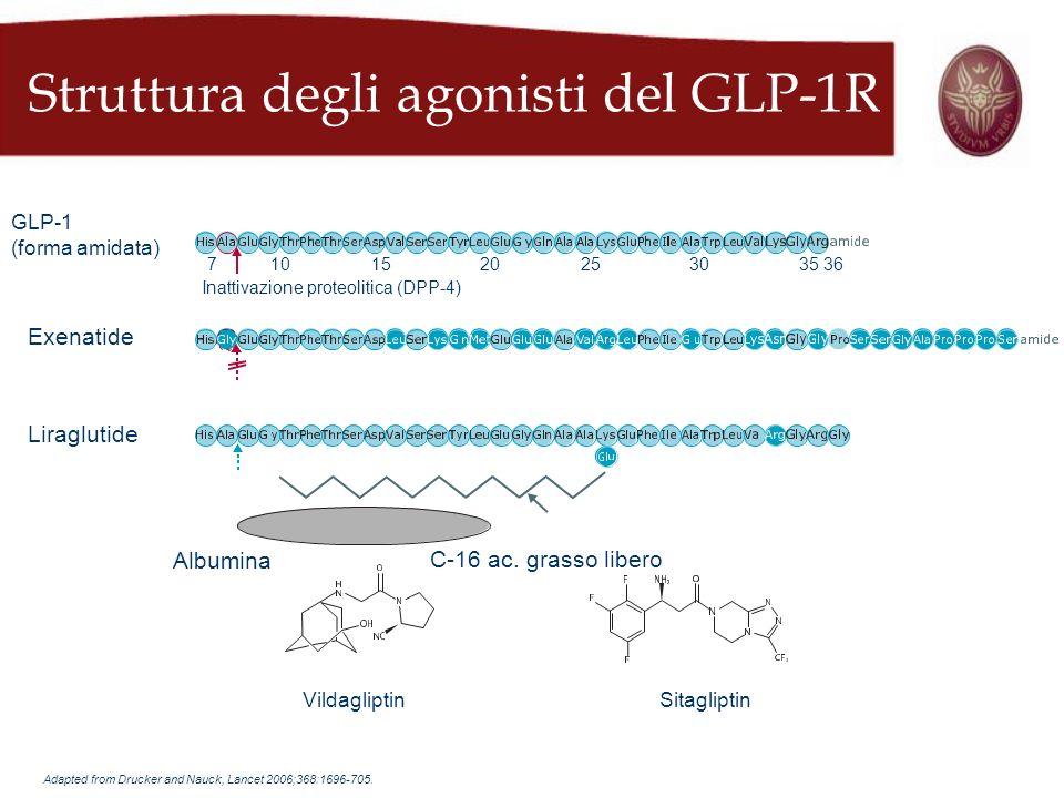 Struttura degli agonisti del GLP-1R