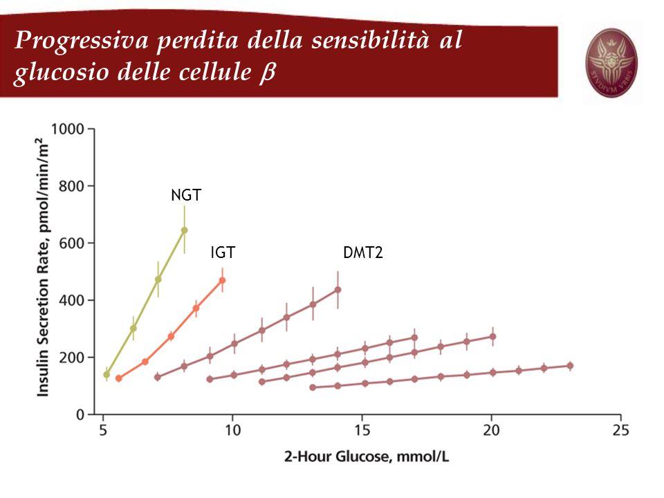Progressiva perdita della sensibilità al glucosio delle cellule b