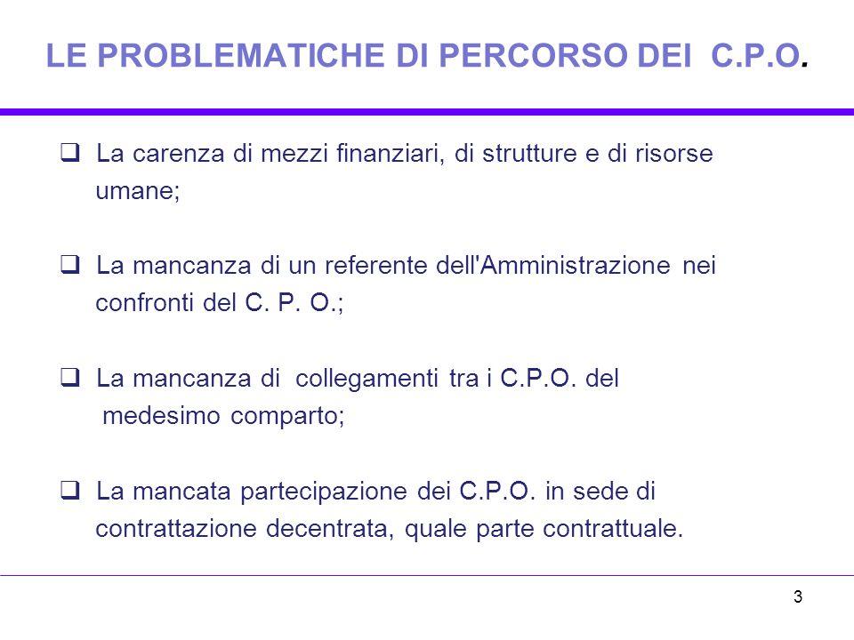 LE PROBLEMATICHE DI PERCORSO DEI C.P.O.