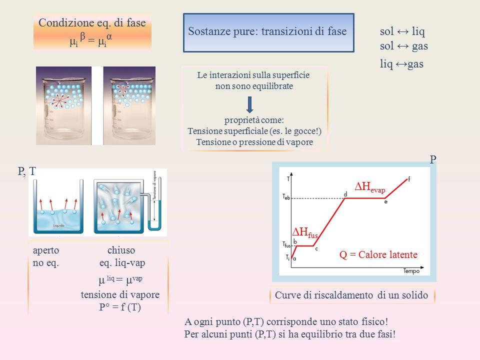 sol ↔ gas Condizione eq. di fase μi β = μiα