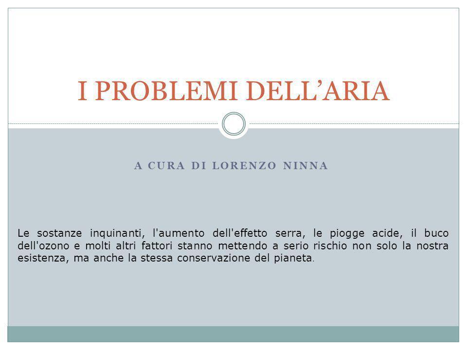 I PROBLEMI DELL'ARIA A cura di Lorenzo Ninna