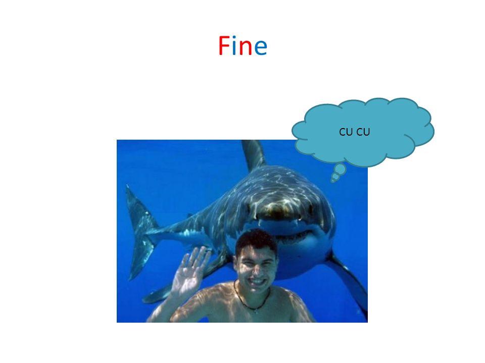 Fine CU CU