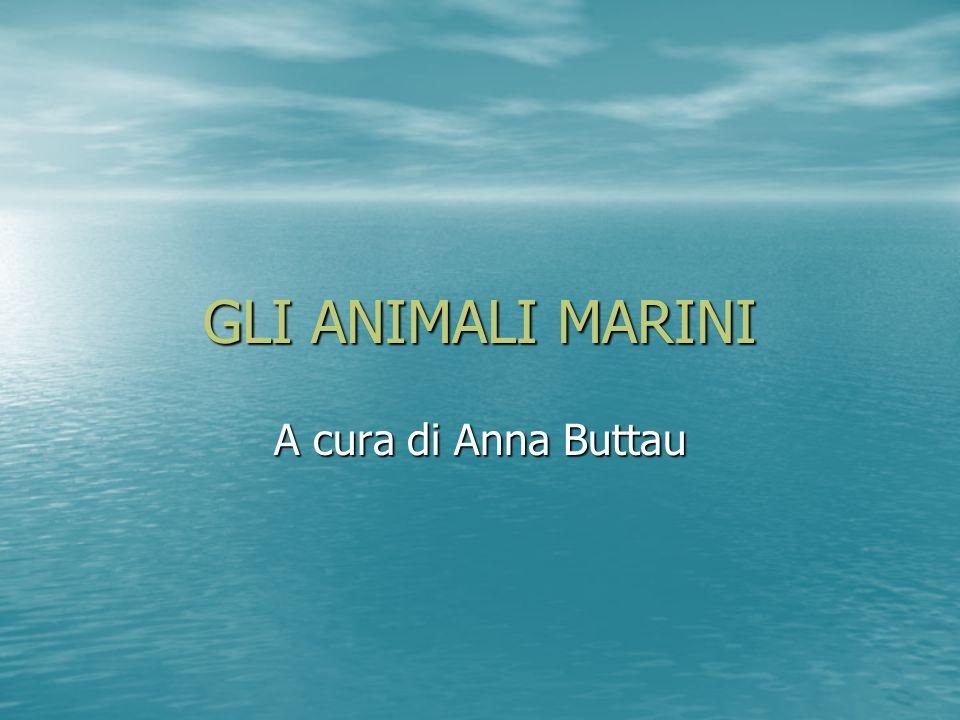 GLI ANIMALI MARINI A cura di Anna Buttau