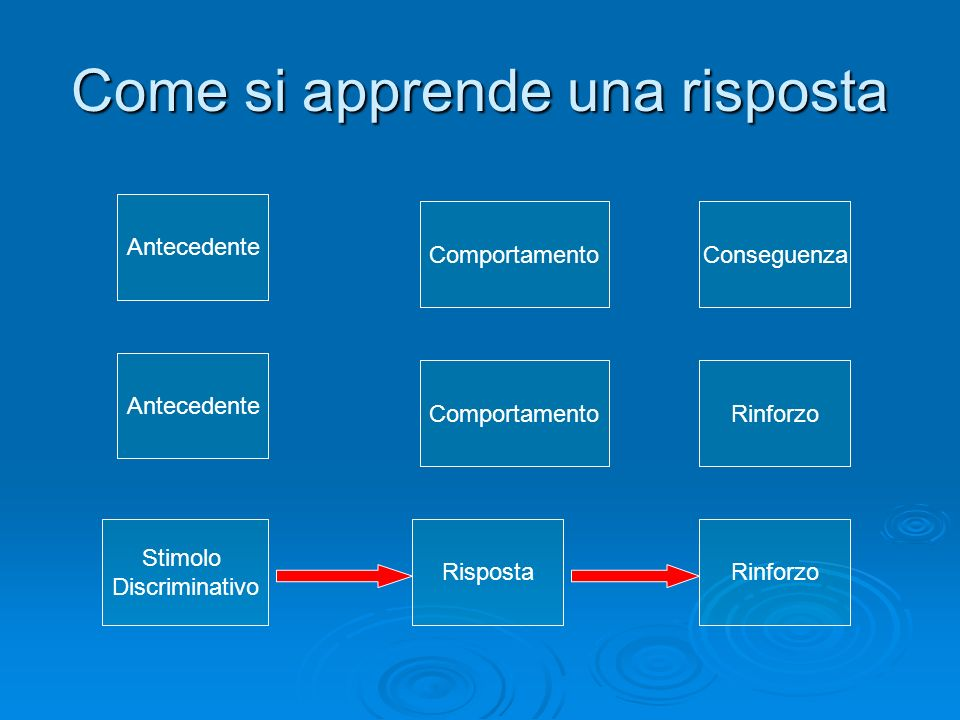 Come si apprende una risposta