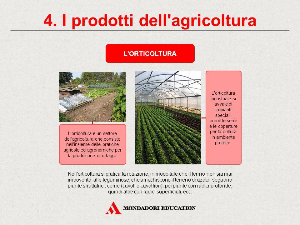 4. I prodotti dell agricoltura