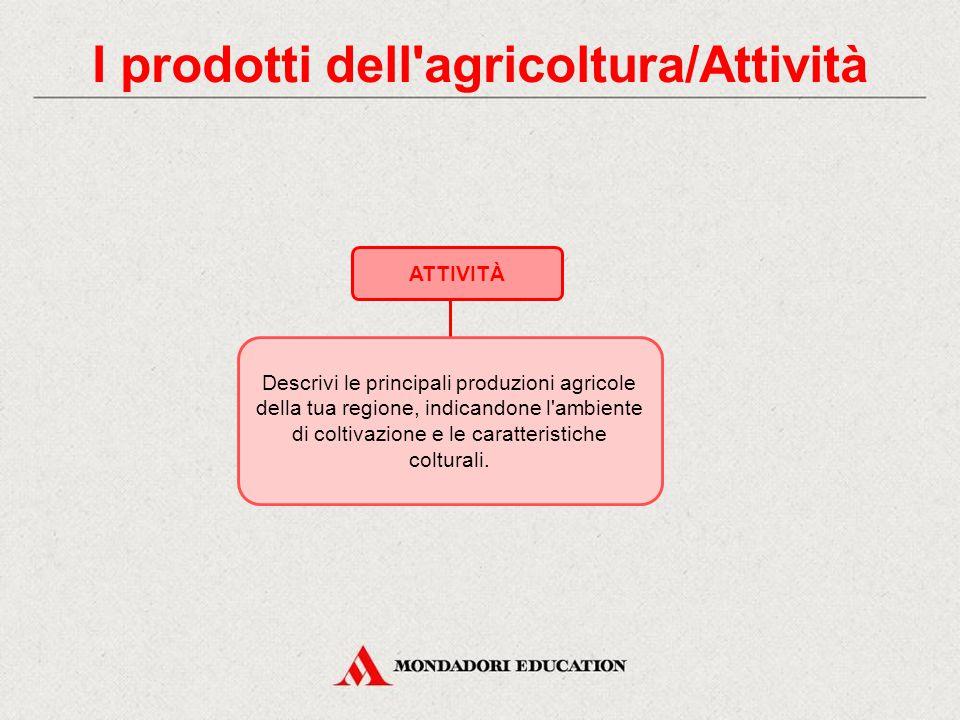 I prodotti dell agricoltura/Attività