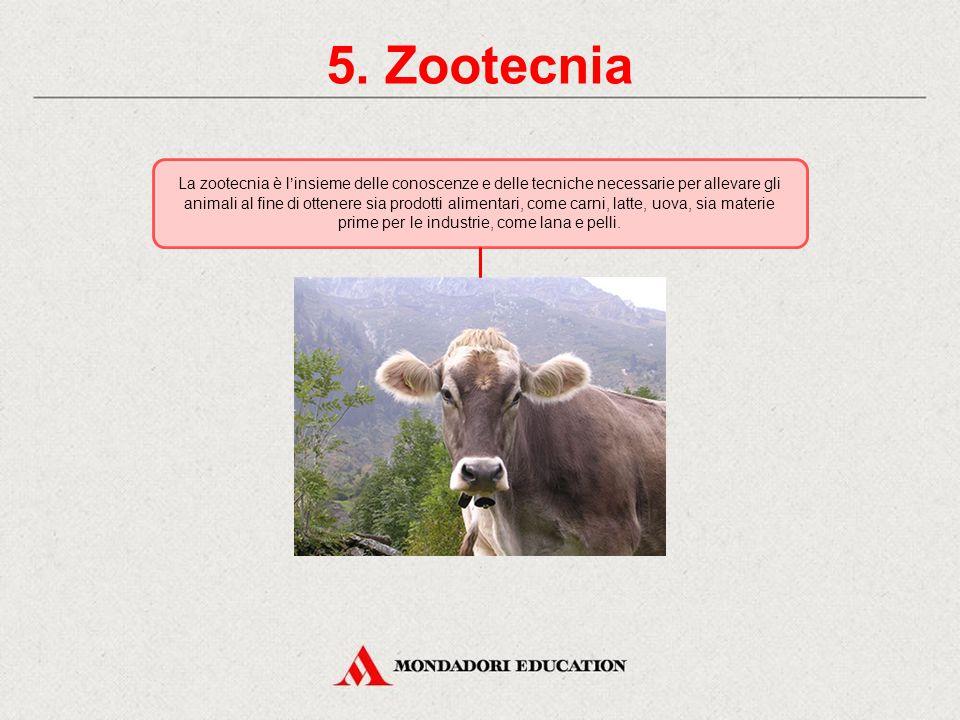 5. Zootecnia
