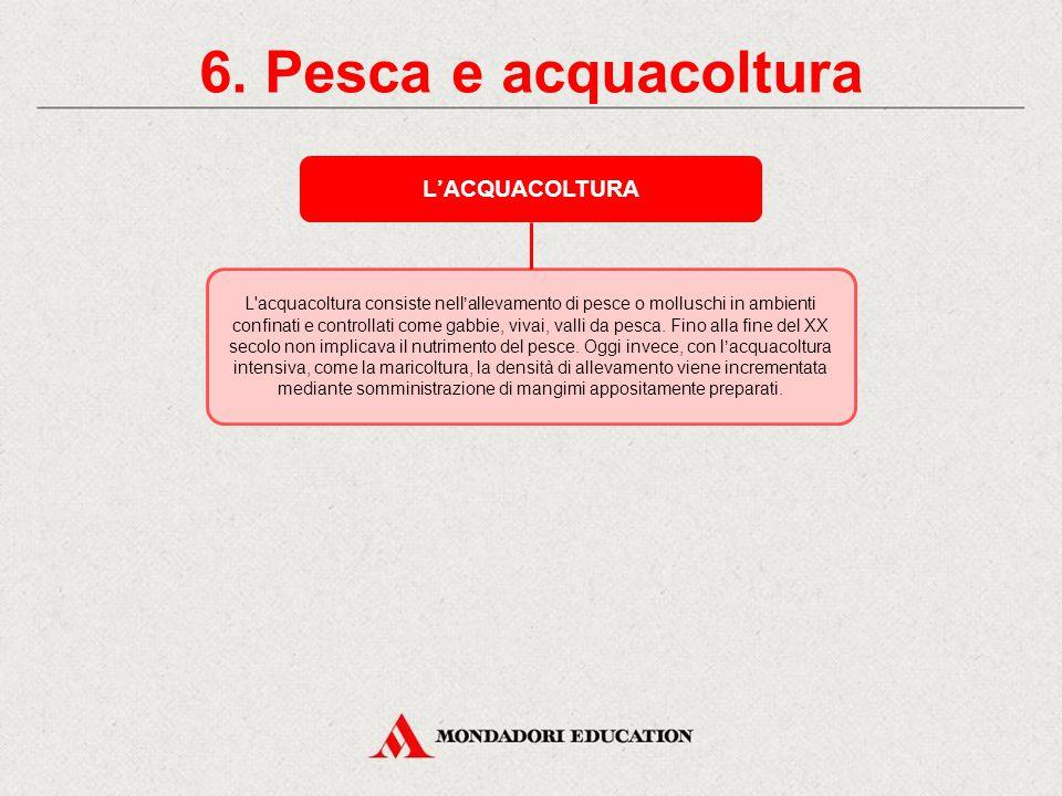 6. Pesca e acquacoltura L'ACQUACOLTURA *