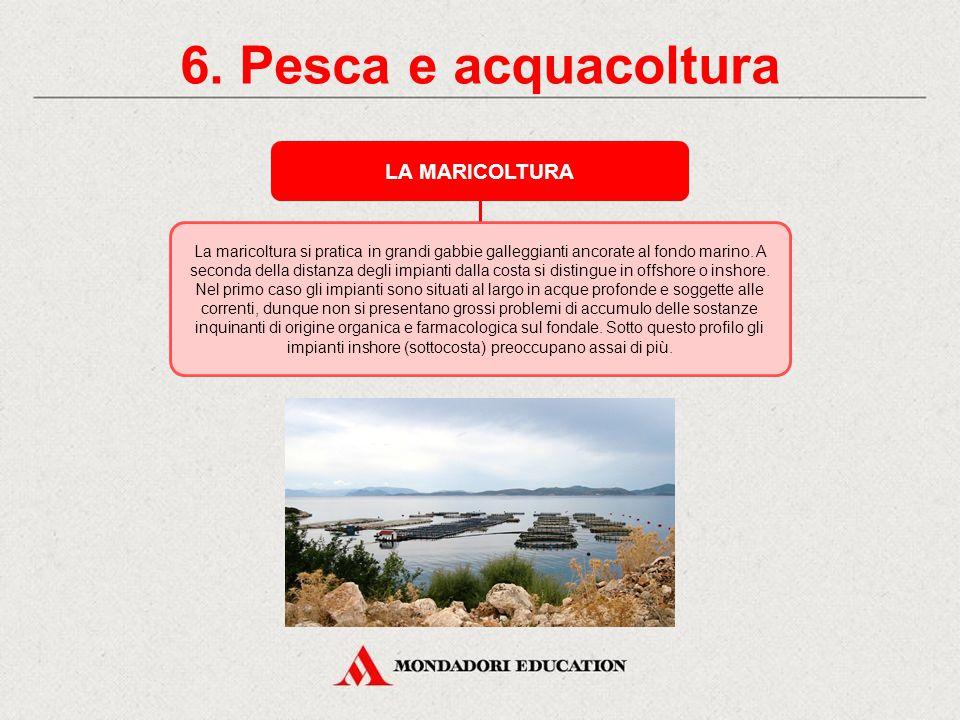 6. Pesca e acquacoltura LA MARICOLTURA *