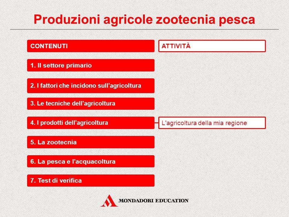Produzioni agricole zootecnia pesca