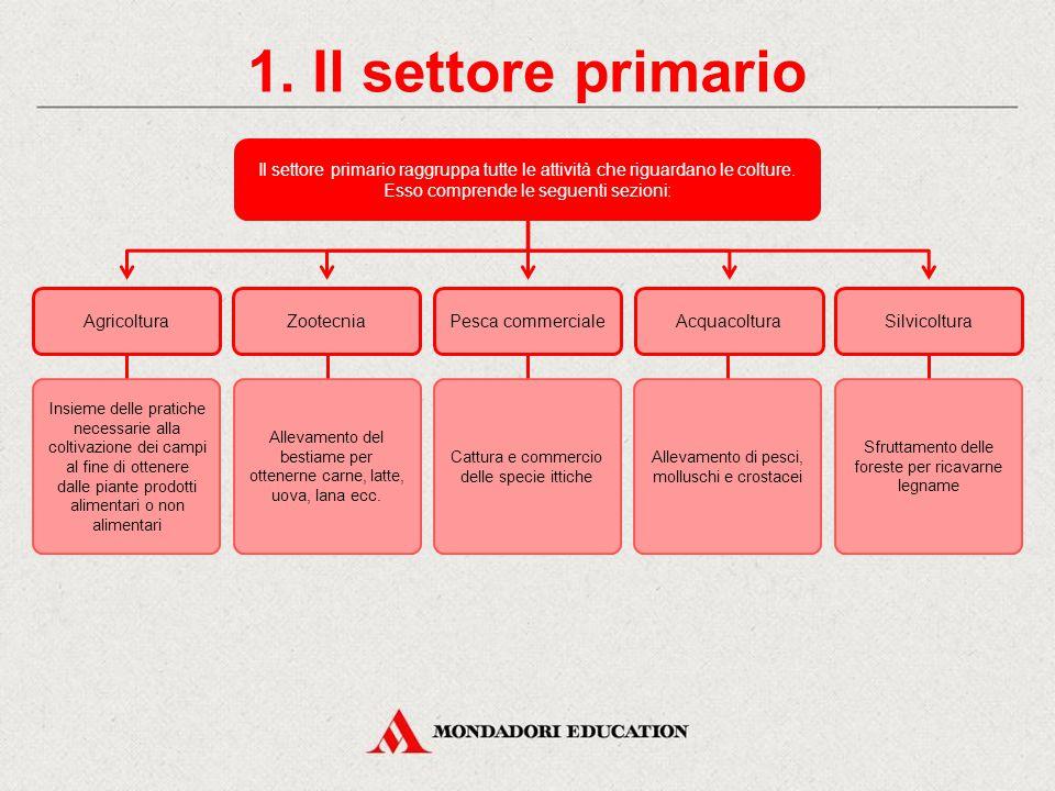 1. Il settore primario Il settore primario raggruppa tutte le attività che riguardano le colture. Esso comprende le seguenti sezioni: