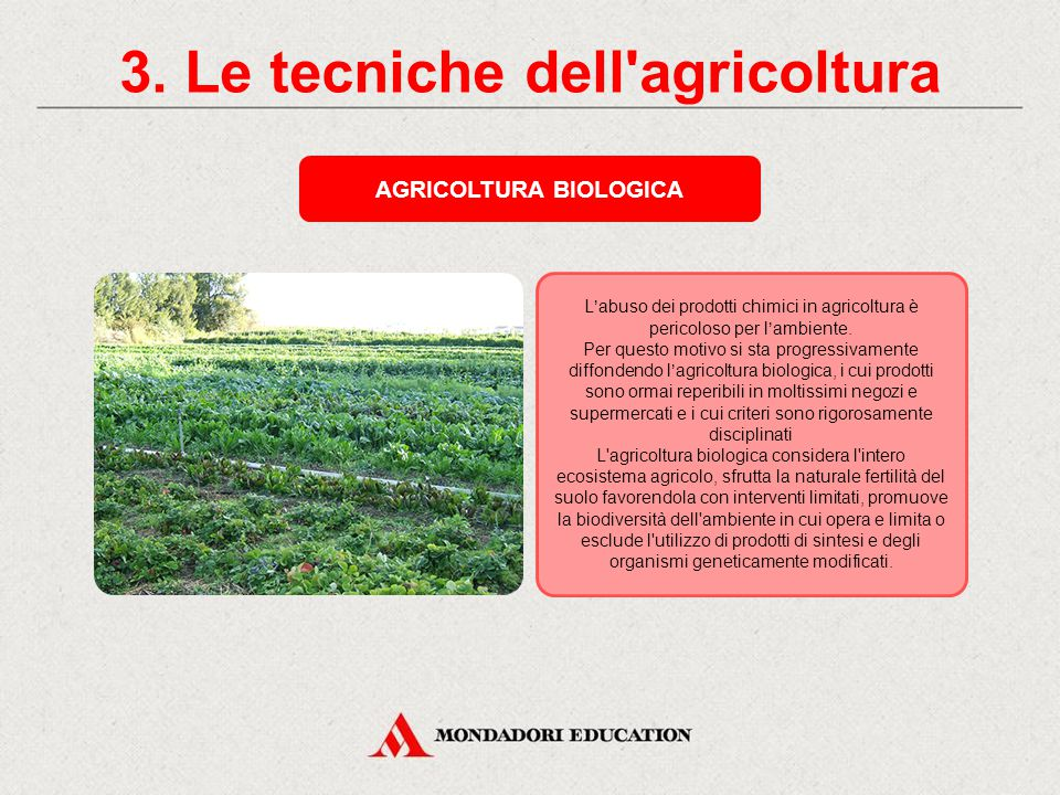 3. Le tecniche dell agricoltura AGRICOLTURA BIOLOGICA