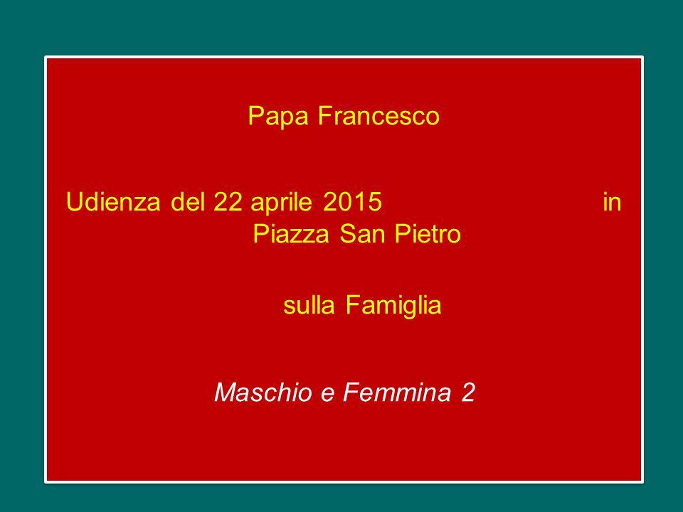 Papa Francesco Udienza del 22 aprile 2015 in Piazza San Pietro sulla Famiglia Maschio e Femmina 2