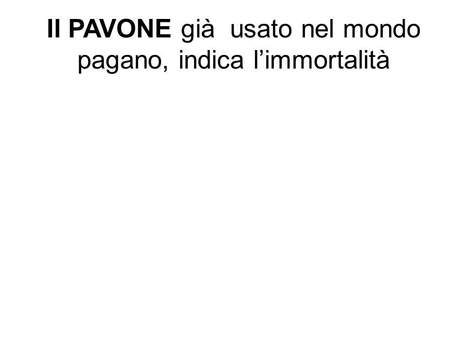 Il PAVONE già usato nel mondo pagano, indica l'immortalità