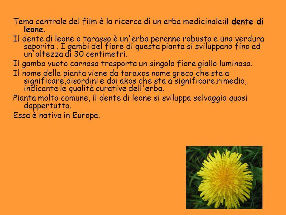 Tema centrale del film è la ricerca di un erba medicinale:il dente di leone.