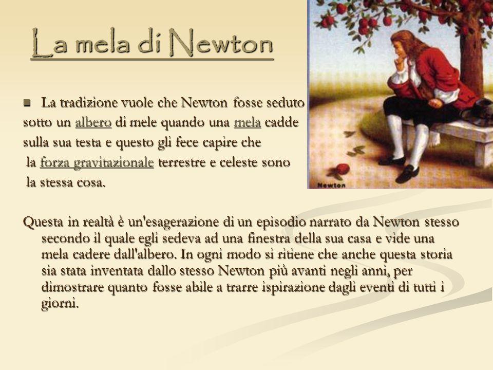 La mela di Newton La tradizione vuole che Newton fosse seduto