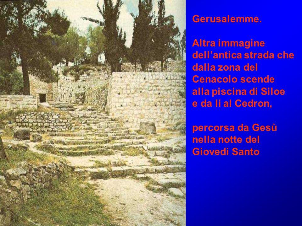 Gerusalemme. Altra immagine. dell'antica strada che. dalla zona del. Cenacolo scende. alla piscina di Siloe.