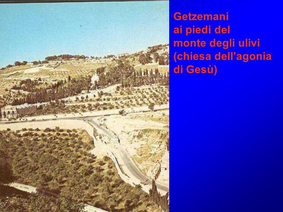 Getzemani ai piedi del monte degli ulivi (chiesa dell'agonia di Gesù)