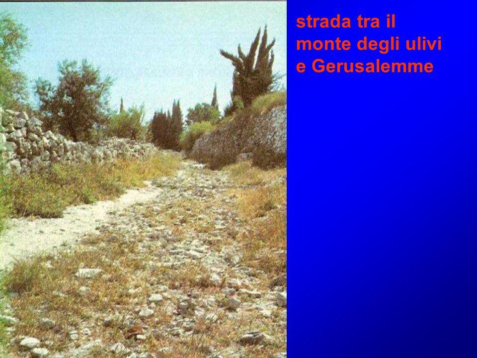 strada tra il monte degli ulivi e Gerusalemme