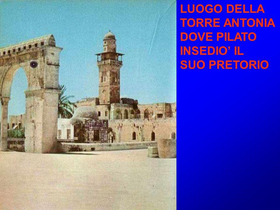 LUOGO DELLA TORRE ANTONIA DOVE PILATO INSEDIO' IL SUO PRETORIO