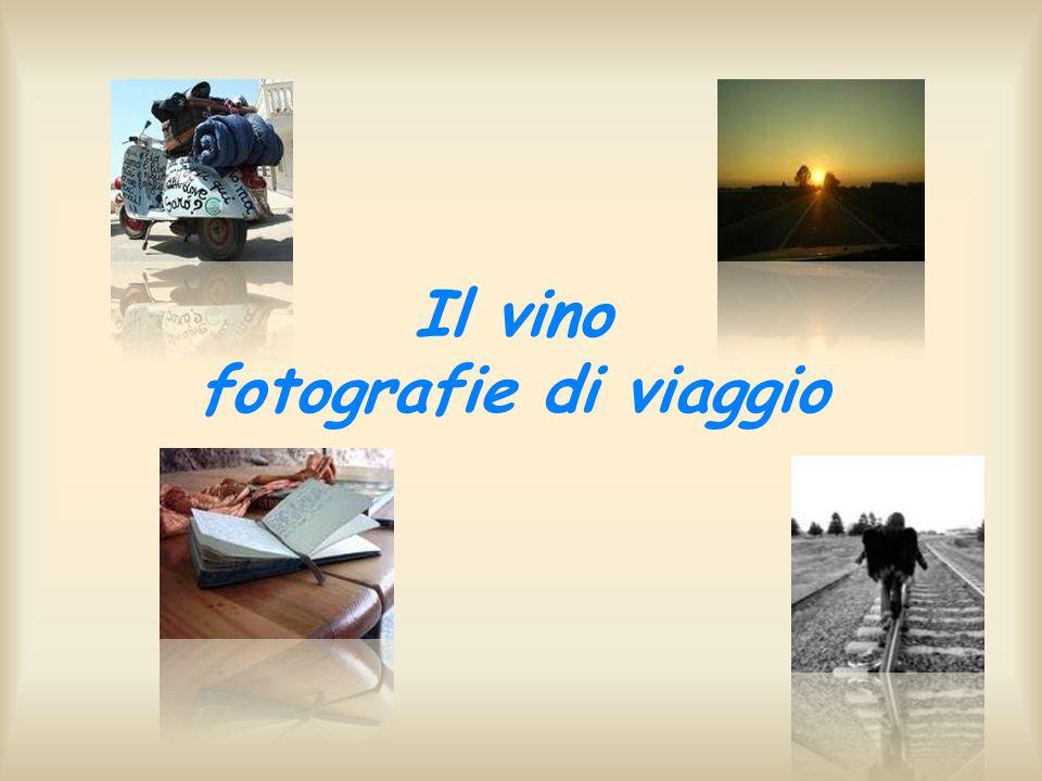 Il vino fotografie di viaggio