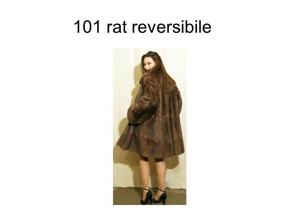 101 rat reversibile