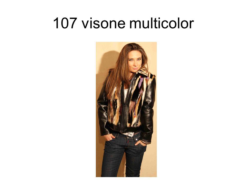 107 visone multicolor